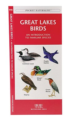 Great Lakes Birds By Kavanagh/ Leung